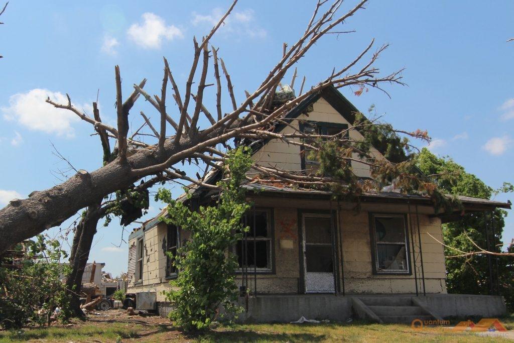 Fallen Tree on Home